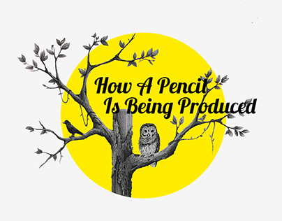 How a Pencil Is Being Produced _ Infographic