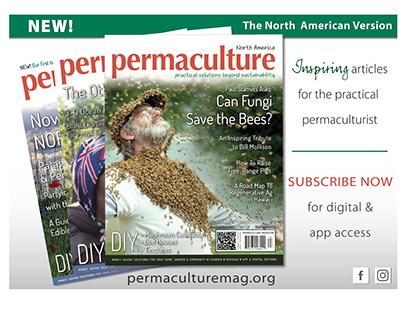 Ad Design: Permaculture Magazine, North America