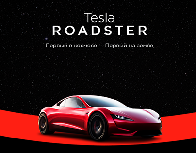 Tesla ROADSTER. The concept of a promo website