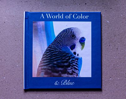 A World of Color & Blue Photo Book