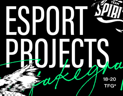 Esport projects. 18-20