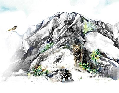 台灣山脈之美 The Formosan Mountain