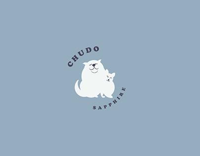 CHUDO SAPPHIRE   VISUAL IDENTITY