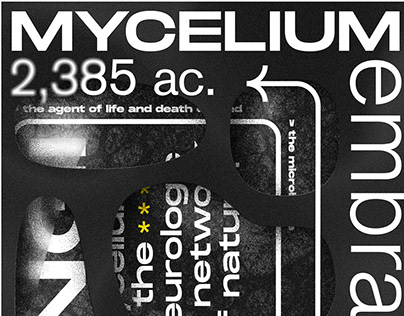 Mycelium: The agent of life and death on earth