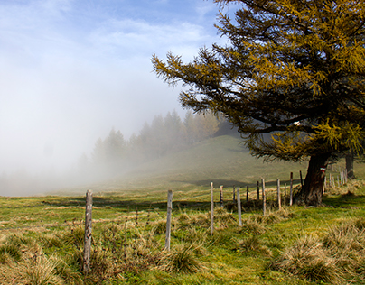 Light, fog and clouds
