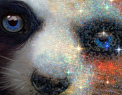 How to create a Diamond Painting with your own images