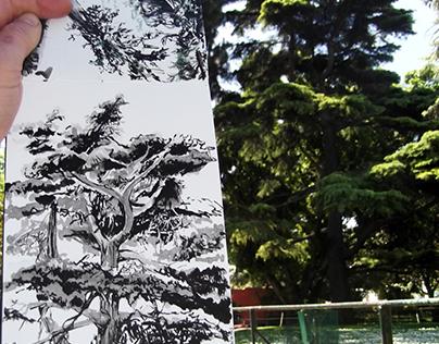 WEIRD LISBON: STRANGE TREES 2017