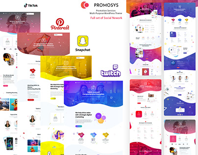 PromoSys Set of Social Networks Promotional Services