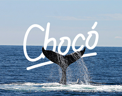 Chocó - Conceptual Branding