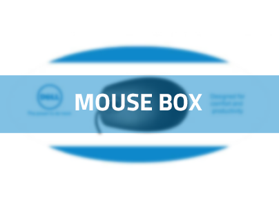 Injection Molded Mouse Box