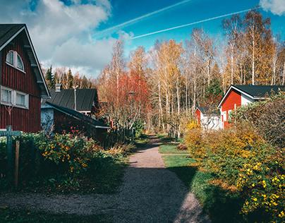 Puolarmaari allotment garden and cottages 2
