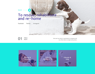 Animal shelter Home page design with wordpress