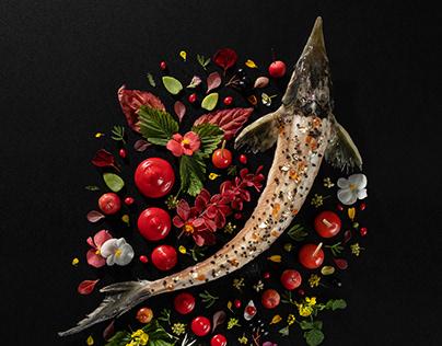 Foodart | Modern food photography