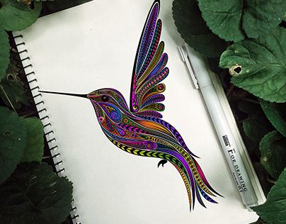 Vector illustration hummingbird in zentangle style