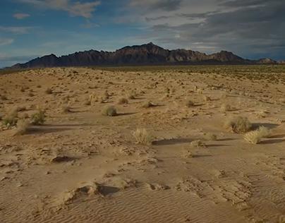 Lower Sonoran Desert Visual Documentary