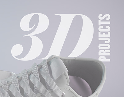 3D Projects 03