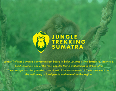 Jungle Trekking Sumatra | Logo Design and Branding