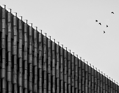 SHAPES OF WARSAW