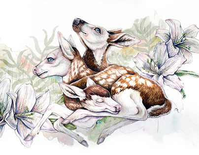Three Headed Deer Watercolour Illustration