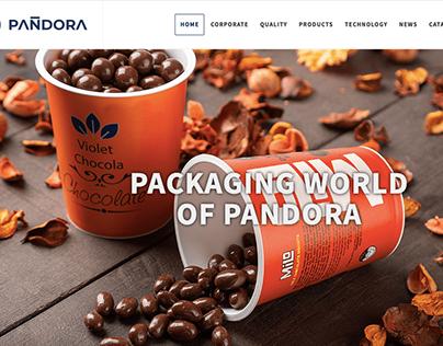 Pandora Plastik Aş Web Site