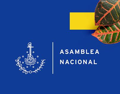 Venezuelan National Assembly - ReBrand proposal