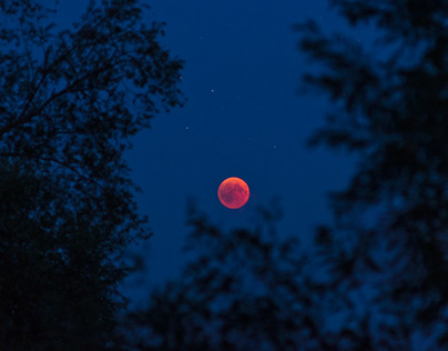THE RED DANCE OF MOON AND MARS