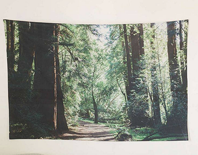 Urban Outfitters - Forest Tapestry