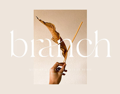 Branch | Modern Ligature Serif