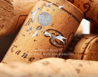 Systemic analysis of white wine production