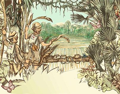Solberg & Hansen illustrasjon