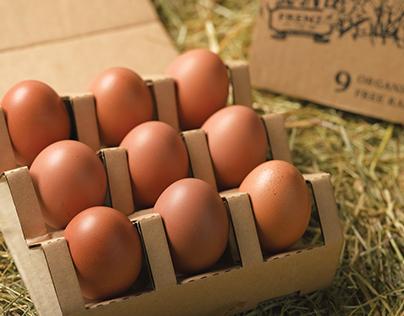 FRENZ egg
