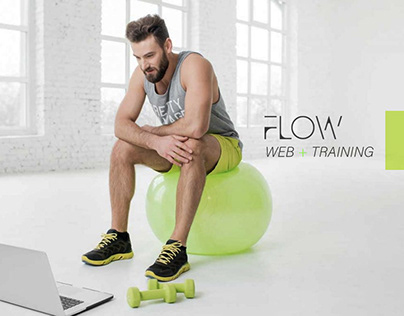 Web site + Training Flow Chile