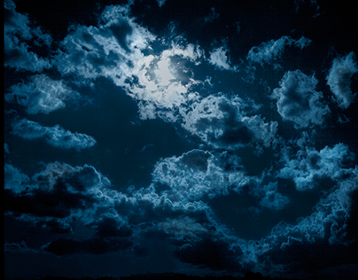 MY LAND- Wolf Moon. #02