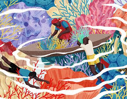 ADAMA Sea Moss Packaging Illustration