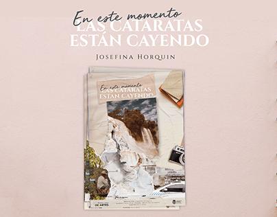 Identidad visual Cataratas - Tesis Josefina Horquin