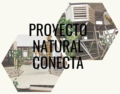 Proyecto Tectónica: Proyecto Natural Conecta