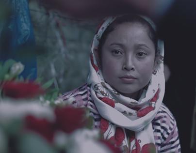 North East India - Travel Film