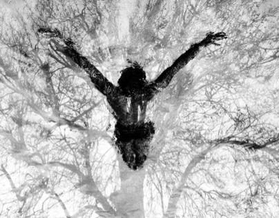 El árbol de la vida/ The tree of life.