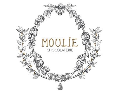 Rediseño logotipo Moulie