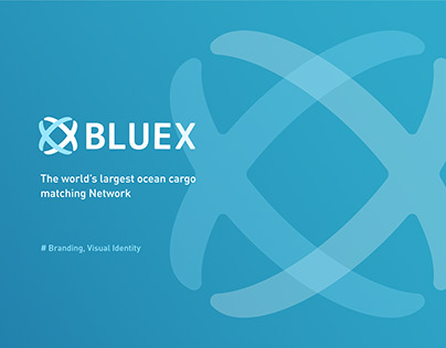 Brand & Visual Identity | BlueX