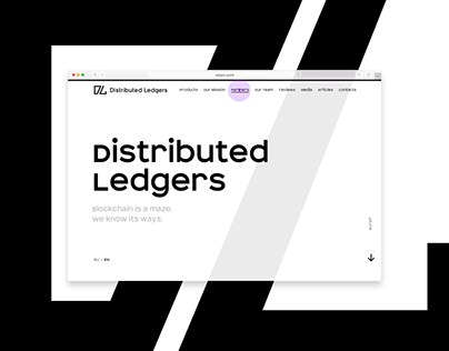 Concept for Distributed Ledgers