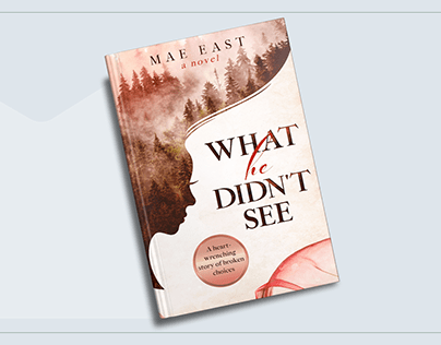 """Book cover design for """"What He Didn't See"""""""