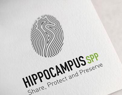 Visual identity-Hipocampus
