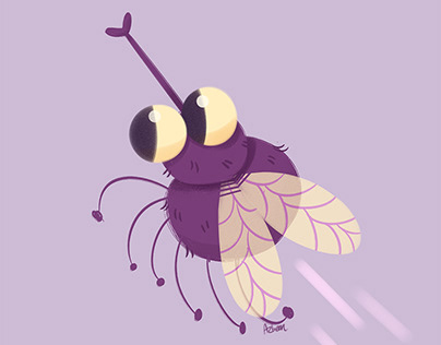 Lil Fly (process video)