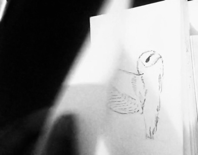 Bound Moments : Owl