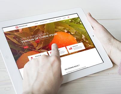 ROSAFLOR | Distribution des produits agricole