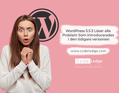 WordPress 5.5.3 Löser Problem som Introducerades 5.5.2