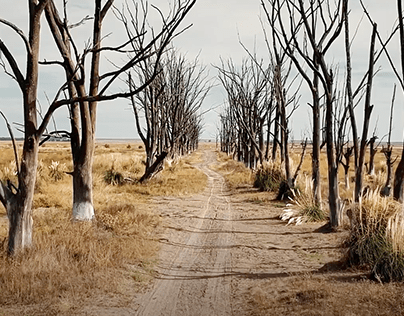 El Campito Refugio - Never Alone (JWT)