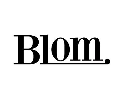 Blom Portfolio Showreel