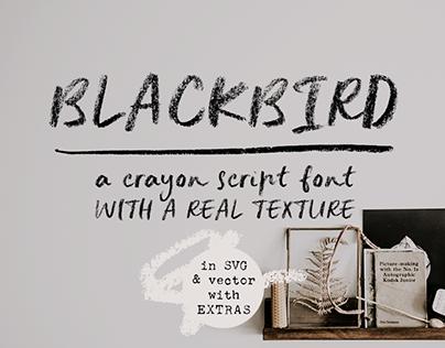 Blackbird crayon script SVG font